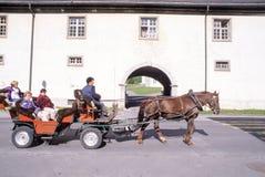 Άνθρωποι που προσπαθούν να κάνει έναν γύρο σε μια horse-drawn μεταφορά Στοκ Εικόνα