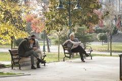 Άνθρωποι που στηρίζονται στο πάρκο Gezi, Ιστανμπούλ Στοκ Εικόνες