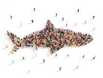 Άνθρωποι που όπως την εβδομάδα καρχαριών απεικόνιση αποθεμάτων