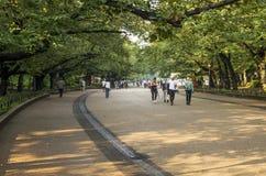 άνθρωποι Ρήγα πάρκων της Λετονίας Στοκ φωτογραφίες με δικαίωμα ελεύθερης χρήσης