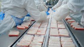 Άνθρωποι στα ένα τεθειμένα εργοστάσιο προϊόντα στους πλαστικούς δίσκους απόθεμα βίντεο