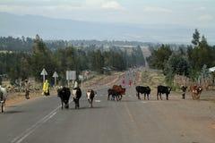 Άνθρωποι στις οδούς της Αιθιοπίας Στοκ Εικόνα