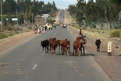 Άνθρωποι στις οδούς της Αιθιοπίας Στοκ Φωτογραφίες