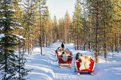 Άνθρωποι στο σαφάρι τροχόσπιτων ελκήθρων ταράνδων στο δασικό φινλανδικό Lapland Στοκ φωτογραφία με δικαίωμα ελεύθερης χρήσης