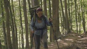 Άνθρωποι τουριστών που στο δάσος στις θερινές διακοπές Αναρρίχηση και να πραγματοποιήσει οδοιπορικό απόθεμα βίντεο