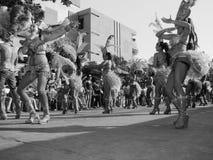 Άνθρωποι του καρναβαλιού Στοκ φωτογραφίες με δικαίωμα ελεύθερης χρήσης
