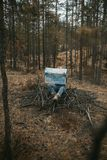 Άνθρωπος με έναν χάρτη στο δάσος Στοκ εικόνες με δικαίωμα ελεύθερης χρήσης