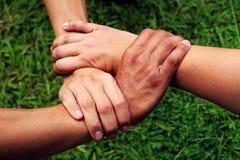 άνθρωπος χεριών σταύλος σύλληψης χεριών Στοκ Εικόνες
