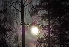 Άνοδος φεγγαριών στα αστέρια νυχτερινού ουρανού αστερισμού Virgo στοκ εικόνα με δικαίωμα ελεύθερης χρήσης