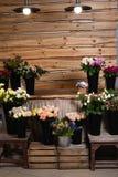 Άνοιγμα ενός νέου ευρωπαϊκού στούντιο λουλουδιών Συλλογή των ανθοδεσμών για τις διακοπές στοκ εικόνες