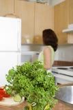 άνοιγμα ψυγείων Στοκ Εικόνα