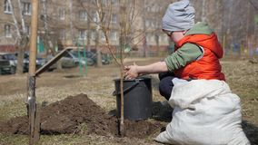Άνοιξη Ένα μικρό αγόρι που φυτεύει τα οπωρωφόρα δέντρα δίπλα σε ένα multi-storey κατοικημένο κτήριο Οικολογία, που φυτεύει τα σπο φιλμ μικρού μήκους