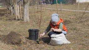 Άνοιξη Ένα μικρό αγόρι που φυτεύει τα οπωρωφόρα δέντρα δίπλα σε ένα multi-storey κατοικημένο κτήριο Οικολογία, που φυτεύει τα σπο απόθεμα βίντεο