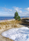 άνοιξη ακτών Στοκ φωτογραφία με δικαίωμα ελεύθερης χρήσης