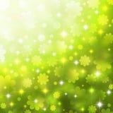 άνοιξη ανασκόπησης chamomiles Στοκ Εικόνες