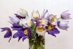 Άνοιξη ανθοδεσμών λουλουδιών Snowdrops Στοκ εικόνες με δικαίωμα ελεύθερης χρήσης