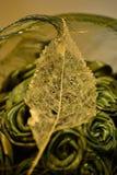 Άνοιξη βρίσκουμε τα παλαιά φύλλα κατά μήκος των διαδρομών περπατήματος στοκ εικόνες