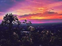 Άνοιξη ηλιοβασιλέματος Στοκ Εικόνα