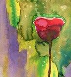 άνοιξη λιβαδιών λουλου&d Στοκ φωτογραφίες με δικαίωμα ελεύθερης χρήσης