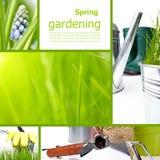 άνοιξη κήπων κολάζ Στοκ Φωτογραφία