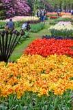 άνοιξη κήπων λουλουδιών keuke Στοκ Φωτογραφίες