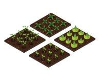 άνοιξη κήπων isometric σύνολο εικονιδίων επίσης corel σύρετε το διάνυσμα απεικόνισης Στοκ Εικόνα