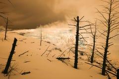 Άνοιξη καναρινιών τις υπέρυθρες, μαμμούθ καυτές ανοίξεις, Yellowstone Nati Στοκ Φωτογραφίες