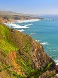 Άνοιξη κατά μήκος της εθνικής οδού Pacific Coast, Καλιφόρνια. Στοκ φωτογραφία με δικαίωμα ελεύθερης χρήσης