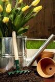 άνοιξη κηπουρικής Στοκ Φωτογραφίες