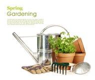 άνοιξη κηπουρικής Στοκ φωτογραφίες με δικαίωμα ελεύθερης χρήσης