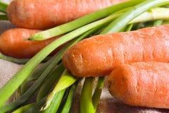 άνοιξη κρεμμυδιών καρότων Στοκ φωτογραφία με δικαίωμα ελεύθερης χρήσης
