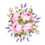 άνοιξη λουλουδιών ανθο&d απεικόνιση αποθεμάτων