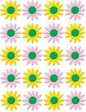 άνοιξη λουλουδιών κολά&zet Στοκ Εικόνα