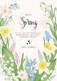 άνοιξη λουλουδιών καρτών Στοκ φωτογραφία με δικαίωμα ελεύθερης χρήσης