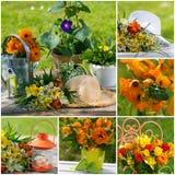 άνοιξη λουλουδιών κολά&zet Στοκ Εικόνες