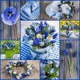 άνοιξη λουλουδιών κολά&zet Στοκ εικόνα με δικαίωμα ελεύθερης χρήσης