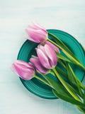 Άνοιξη Πάσχας πορφυρό υπόβαθρο χρώματος κρητιδογραφιών τουλιπών floral πράσινο Στοκ Εικόνες
