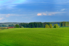 άνοιξη πεδίων Στοκ φωτογραφίες με δικαίωμα ελεύθερης χρήσης