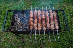 Άνοιξη πικ-νίκ-που ψήνεται στη σχάρα kebabs Στοκ εικόνα με δικαίωμα ελεύθερης χρήσης