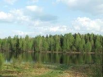 άνοιξη ποταμών ακτών Στοκ Εικόνα