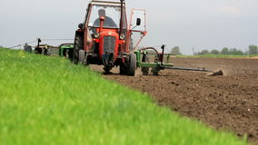 Άνοιξη που φυτεύει το καλαμπόκι σε έναν τομέα απόθεμα βίντεο