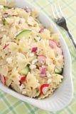 άνοιξη σαλάτας ζυμαρικών στοκ φωτογραφίες με δικαίωμα ελεύθερης χρήσης