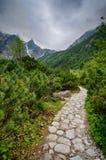 Άνοιξη στα βουνά Στοκ εικόνες με δικαίωμα ελεύθερης χρήσης