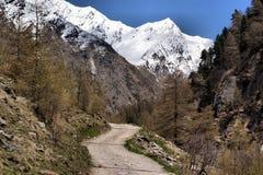 Άνοιξη στα υψηλά βουνά στοκ φωτογραφίες με δικαίωμα ελεύθερης χρήσης