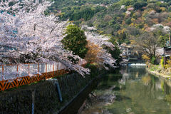 Άνοιξη στην Ιαπωνία Στοκ εικόνα με δικαίωμα ελεύθερης χρήσης