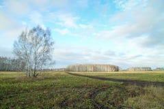 Άνοιξη στους τομείς της Ανατολικής Ευρώπης Στοκ φωτογραφία με δικαίωμα ελεύθερης χρήσης