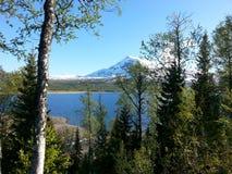Άνοιξη στο βουνό Στοκ φωτογραφία με δικαίωμα ελεύθερης χρήσης