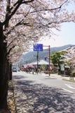 Άνοιξη στο Κιότο, Ιαπωνία Στοκ εικόνα με δικαίωμα ελεύθερης χρήσης
