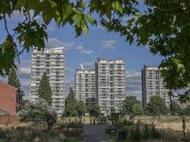Άνοιξη στο Λονδίνο, Αγγλία, το UK  κλάδοι και ψηλά κτίρια στοκ φωτογραφίες με δικαίωμα ελεύθερης χρήσης