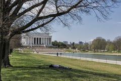 Άνοιξη στο μνημείο του Λίνκολν στην Ουάσιγκτον, συνεχές ρεύμα Στοκ φωτογραφία με δικαίωμα ελεύθερης χρήσης